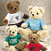 Teddy Bear with Imprinted Tee Shirts