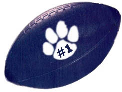 Custom imprinted Plastic Football - 5.5