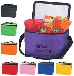 Custom imprinted Non-Woven Insulated Six Pack Kooler Bag