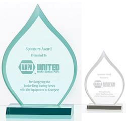 Custom imprinted Inspire Award