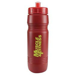 Custom imprinted 20 Oz. Recycled Bike Bottle With Push/Pull Lid